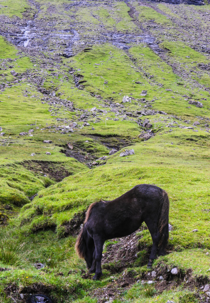 A Faroe Islands Itinerary