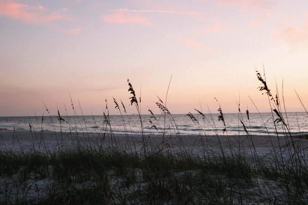 What to do on Anna Maria Island, Florida