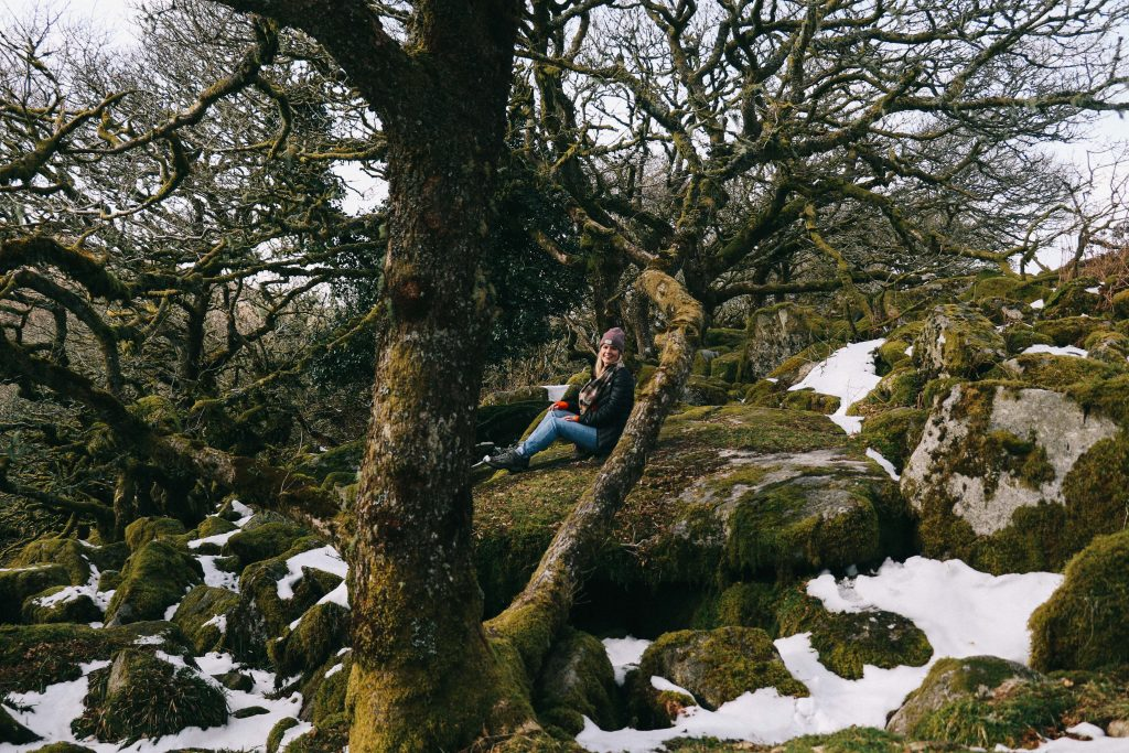 wistman's woods