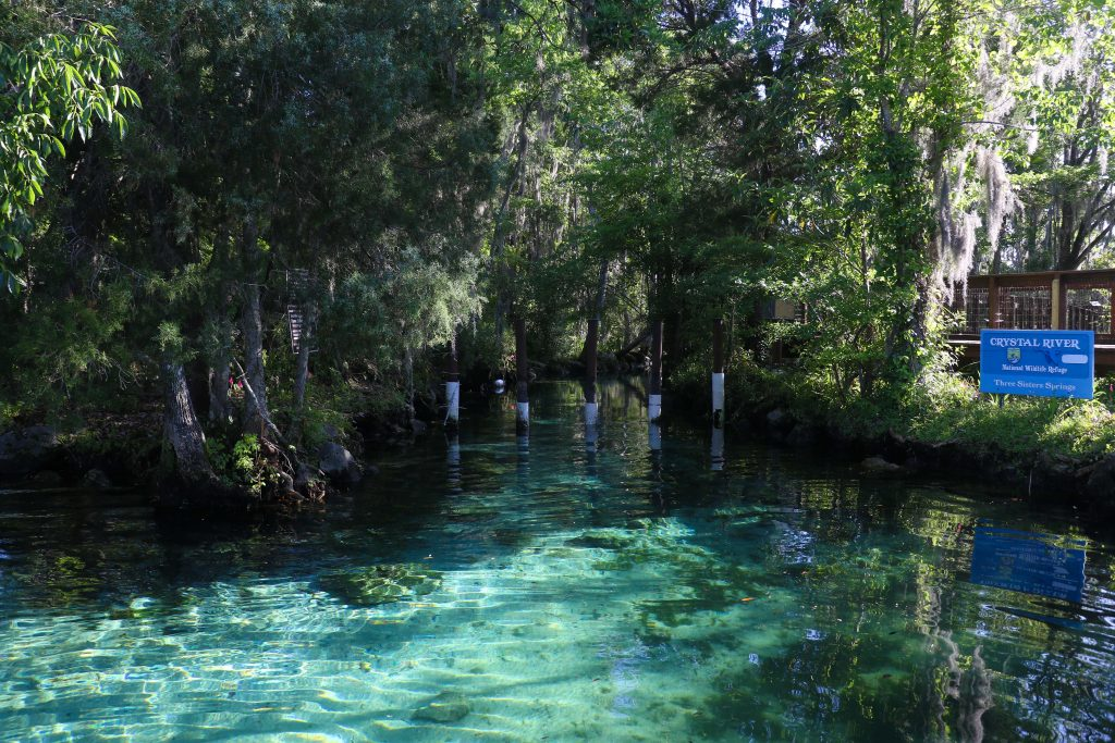 Three Sisters Springs, Crystal River, Florida