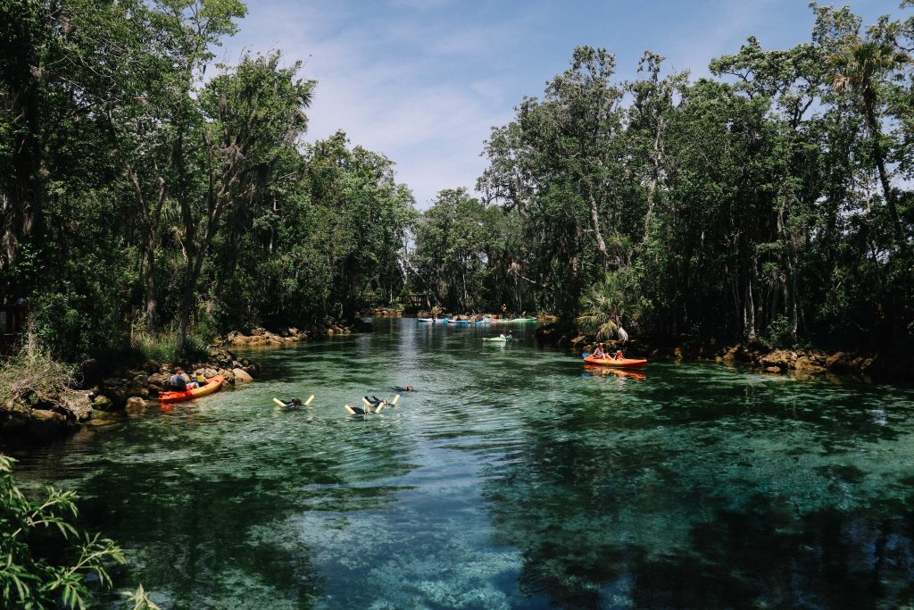 Three Sisters Springs, Crystal River, Florida. Where you can swim with manatees.