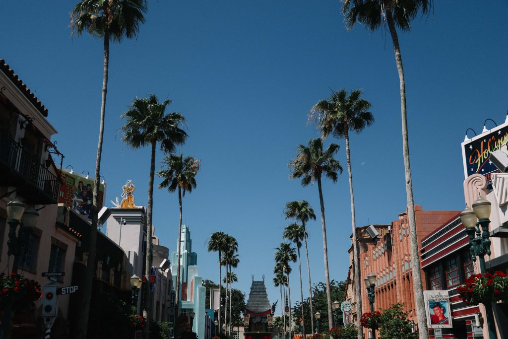 hollywood studios florida