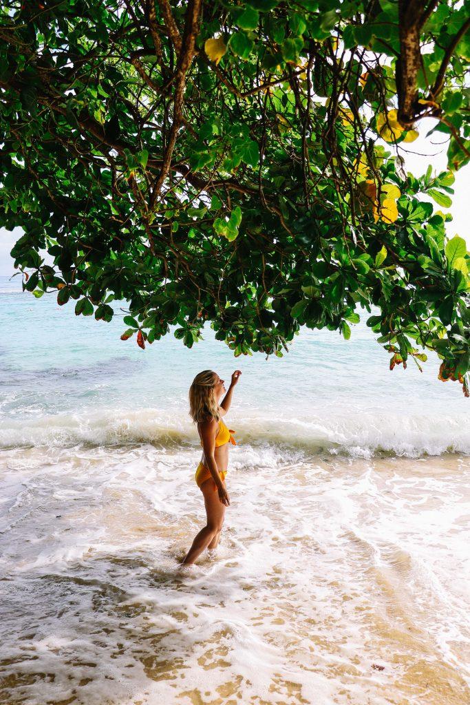 Review of Sandals Ochi Beach Resort