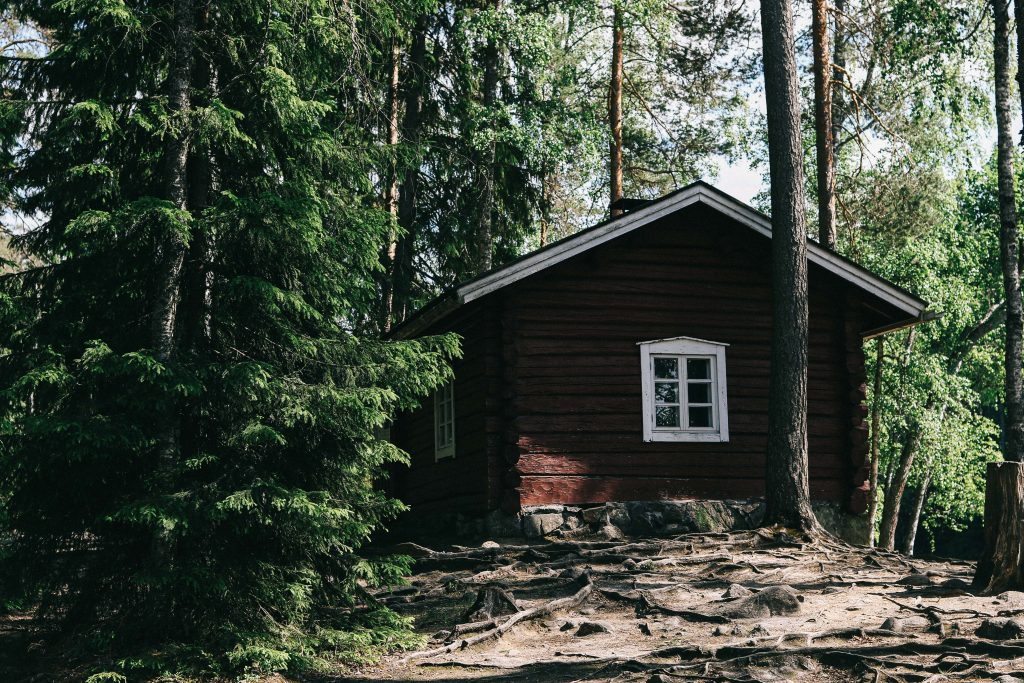 A log cabin in Helvetinjärvi National Park, surrounded by tall fir trees.