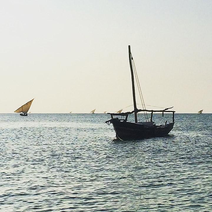 Zanzibar-Gareth-Jenkins-TTT-04