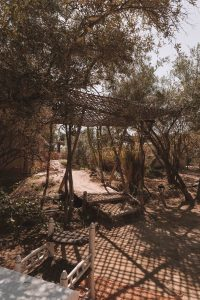 5 days in Marrakech