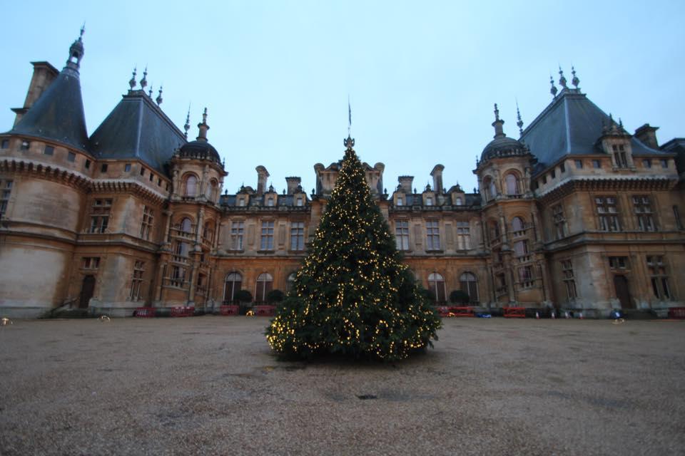 Waddesdon Manor, christmas tree